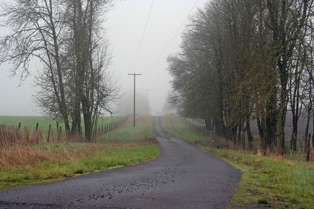 The Battle for Leverett Road