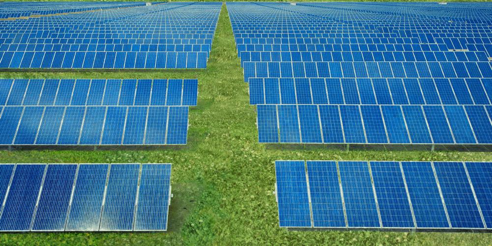 Renew: environmental sustainability & corporate responsibility