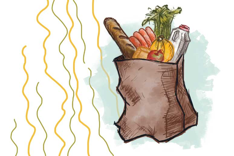 What Can SNAP Do? Addressing Food Access in Low Income Communities