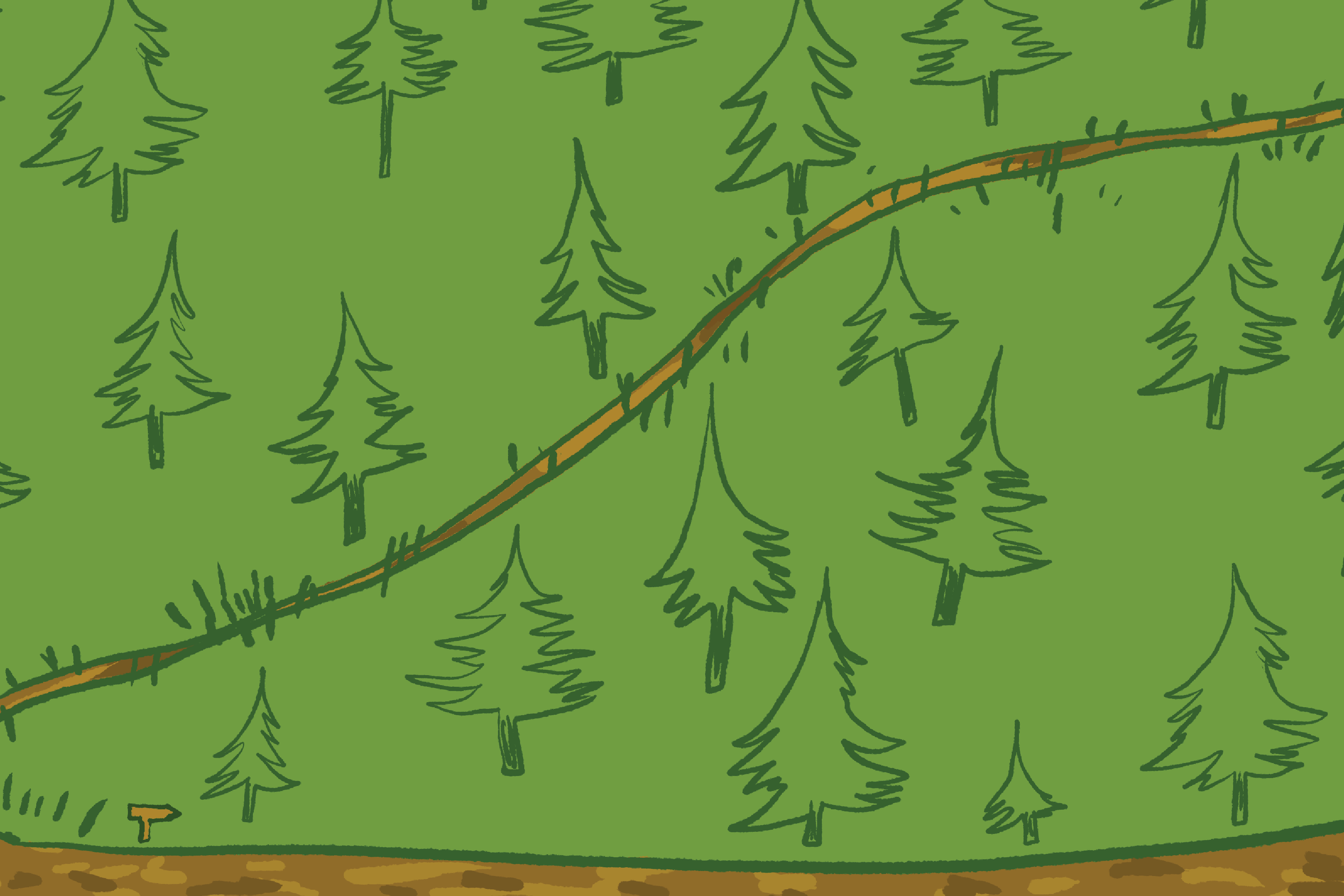 On Optimization: The Difference Between Trails and Women